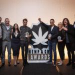 Green Stem Best CBD Oil Winners